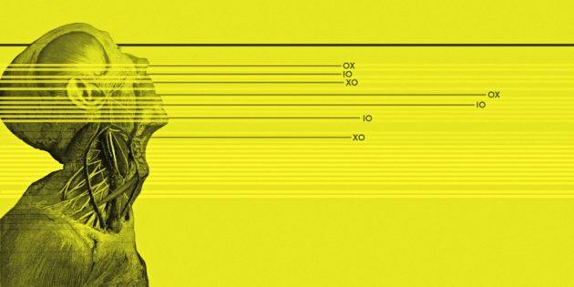 Friedrich Ani: Anis Eck 9: Das Gesicht der Dunkelheit