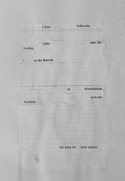 Fremdlesen IV: Sibylle Berg : Vielen Dank für das Leben, München Copyright Dorothea Studthoff