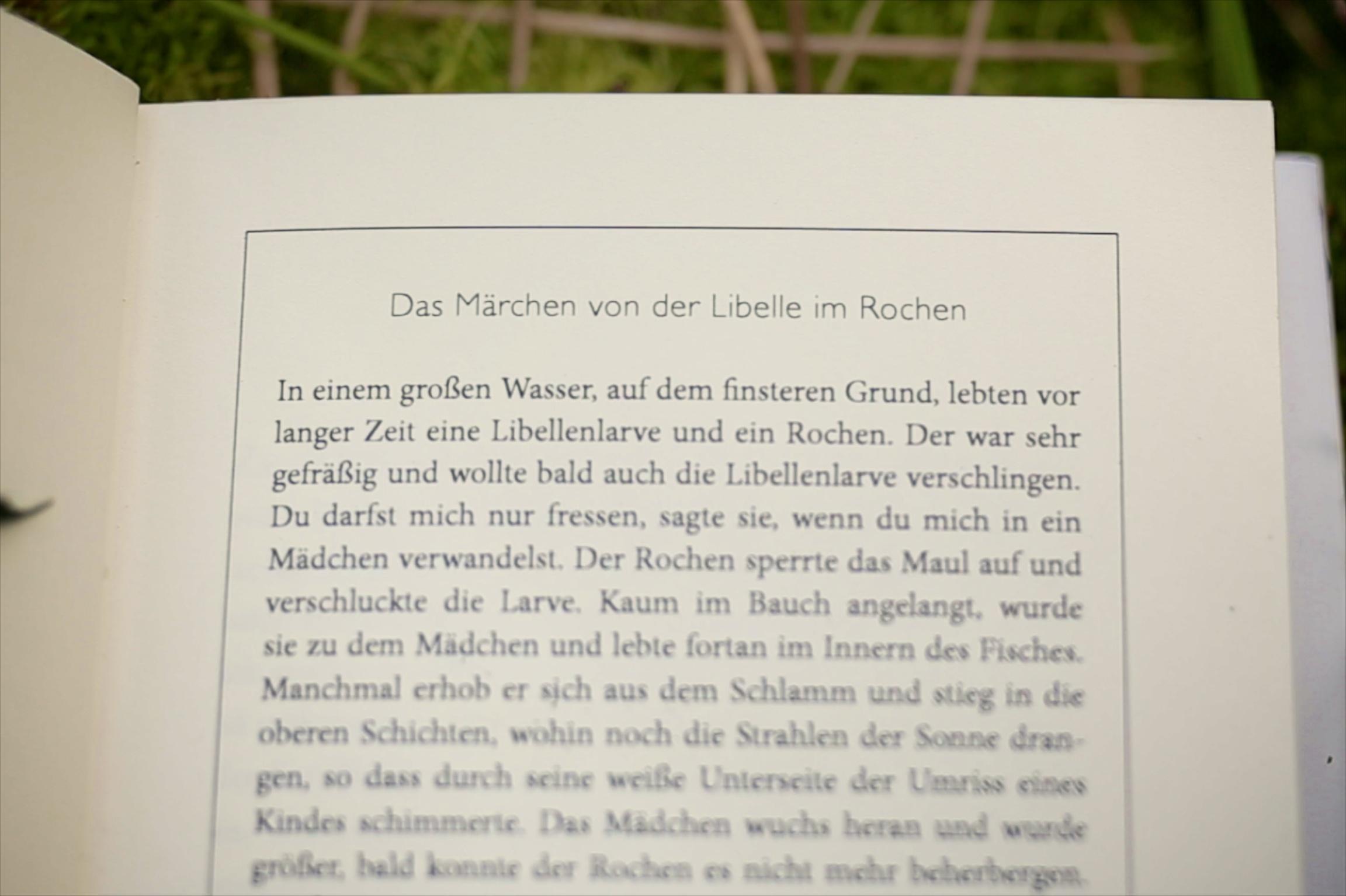 Prologseite aus Gunther Geltingers Roman Moor